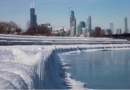 Polar Vortex Peguin Plunge | 2019